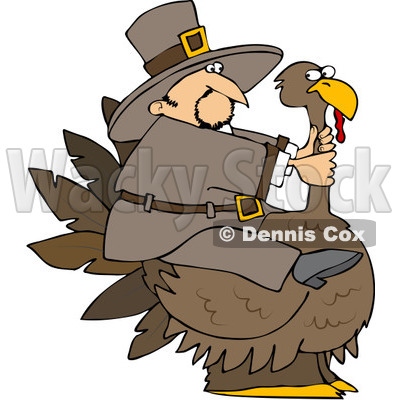 Royalty-Free (RF) Clipart Illustration of a Thanksgiving Pilgrim Trying To Ride A Huge Turkey © djart #101271
