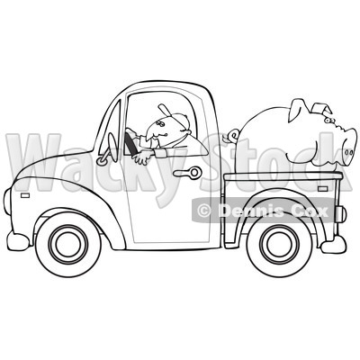 Cartoon Of An Outlined Farmer Driving A Truck With Pig In The Bed - Royalty Free Vector Clipart © djart #1127053
