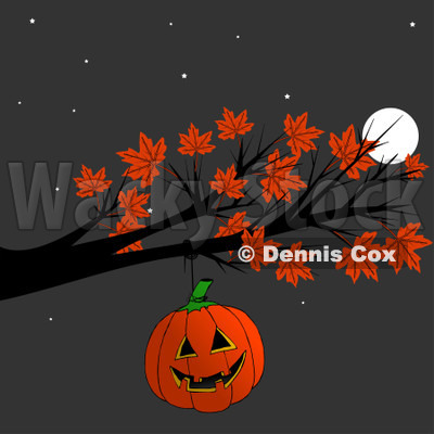 Cartoon Of A Halloween Jackolantern Pumpkin Hanging From An Autumn Maple Tree Branch At Night - Royalty Free Clipart © djart #1129161