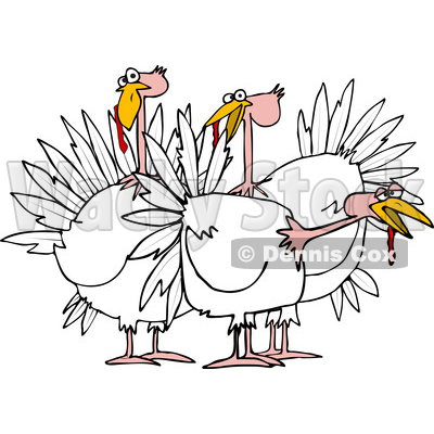 Cartoon of a Small Flock of White Turkeys - Royalty Free Vector Clipart © djart #1208658