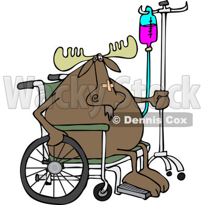 Clipart of an Injured Hospital Patient Moose in a Wheelchair with an Iv - Royalty Free Vector Illustration © djart #1244187