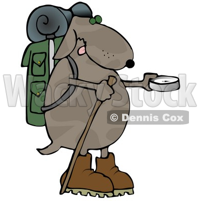 Dog Using a Compass While Hiking Clipart Illustration © djart #13235