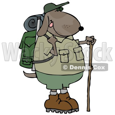 Dog Using A Hiking Stick While Backpacking With Camping Gear Clipart Illustration C Djart 13236