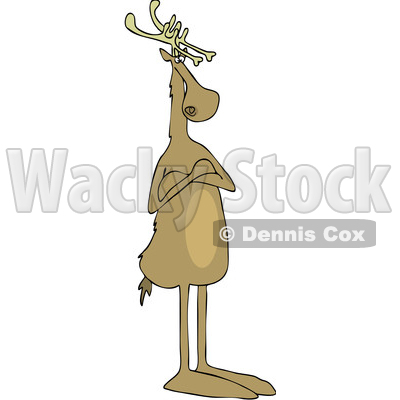 Clipart of a Cartoon Christmas Reindeer Standing Upright with Folded Arms - Royalty Free Vector Illustration © djart #1437933
