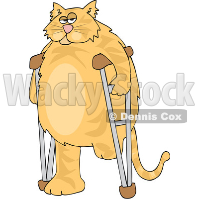 Clipart of a Cartoon Chubby 3 Legged Ginger Cat Using ...