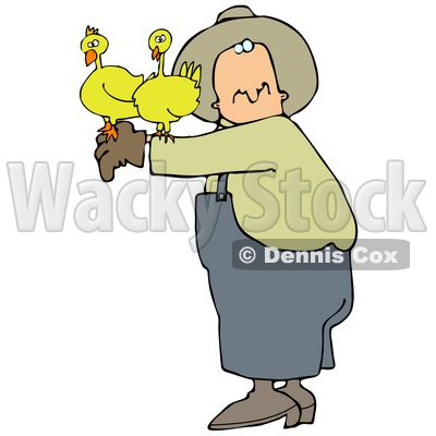 Male Farmer Holding Two Yellow Chickens On His Arm Clipart Illustration © djart #16147