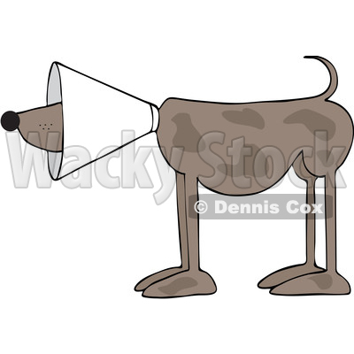 Cartoon Brown Dog Wearing a Cone © djart #1625605