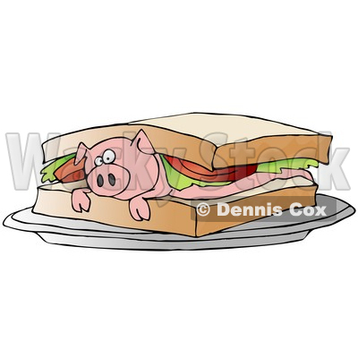 Confused Pink Pig Lying On Its Belly Under Lettuce And Tomato Between Slices Of White Bread On A Blt Sandwich Clipart Illustration © djart #17229
