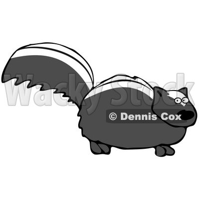 Clipart Illustration of a Nervous Black Skunk With White Stripes On Its Back, Standing Still And Looking At The Viewer © djart #30272