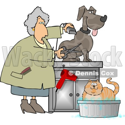 Female Veterinarian Grooming and Trimming Dog's Hair Clipart © djart #4365