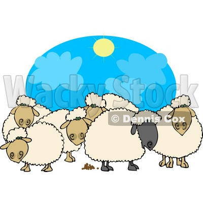 Herd of Black and White Sheep Standing Together Under the Sun Clipart © djart #4577