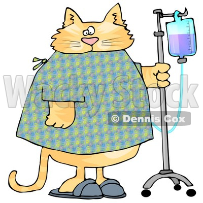 Orange Tabby Cat With an IV Dispenser in a Hospital Clipart Picture © djart #6322