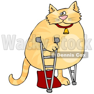 Orange Cat Walking on Crutches in a Hospital, One Leg in a Cast Clipart