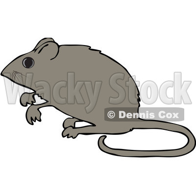 Royalty-Free (RF) Clipart Illustration of an Alert Mouse Standing Up On His Hind Legs © Dennis Cox #99171