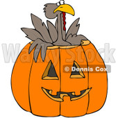 Royalty-Free (RF) Clipart Illustration of a Turkey Bird Popping Out Of A Carved Halloween Pumpkin © Dennis Cox #100129