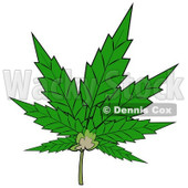 Royalty-Free Clip Art Illustration of a Pot Leaf © djart #1055097
