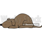 Clipart Brown Dog Resting - Royalty Free Vector Illustration © Dennis Cox #1112786