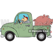 Cartoon Of A Farmer Driving A Truck With Pig In The Bed - Royalty Free Vector Clipart © djart #1127089
