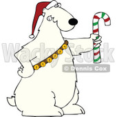 Cartoon Of A Christmas Polar Bear Holding A Candy Cane And Wearing A Santa Hat And Bells - Royalty Free Vector Clipart © Dennis Cox #1144037