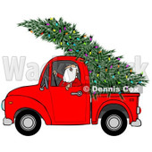 Clipart of Santa Driving a Fresh Cut Christmas Tree with Lights in a Red Pickup Truck - Royalty Free Illustration © djart #1273852