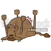 Dead Cow Lying on its Back, its Feet Strait up Clipart Illustration © djart #12934