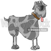 Friendly Great Dane Dog Hanging its Tongue Out Clipart Illustration © Dennis Cox #13221