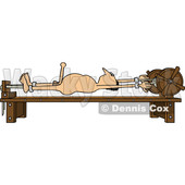 Clipart of a Cartoon Turned on Naked Caucasian Man Tied up Naked on a Torture Rack - Royalty Free Vector Illustration © Dennis Cox #1396160