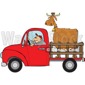 Clipart of a Cartoon White Man Driving a Red Pickup Truck and Hauling a Cow - Royalty Free Vector Illustration © djart #1443262