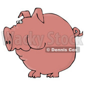 Clipart Illustration of a Fat Pink Pig With A Curly Tail Holding Food In His Cheeks © Dennis Cox #17562