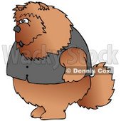 Clipart Illustration of a Big Furry Chow Chow Dog Wearing A Vest And Standing Up On Its Hind Legs Like A Human © djart #18757