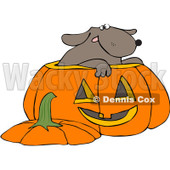 Royalty-Free (RF) Clipart Illustration of a Dog Inside A Halloween Pumpkin © djart #209419