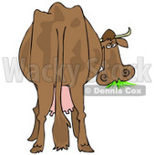 Clipart Illustration of a Brown Dairy Cow With Udders, Looking Back At The Viewer And Grazing On Grass © Dennis Cox #24417