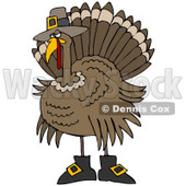 Clipart Illustration of a Silly Thanksgiving Turkey Bird In Pilgrim Boots And A Hat, Hiding From Hunters © Dennis Cox #24999