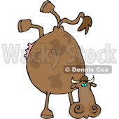 Cow Doing Handstand Clipart © Dennis Cox #4507