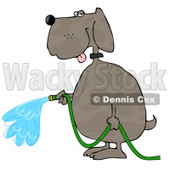 Human-like Dog Watering Outdoor Plants with a Standard Household Garden Hose Clipart © djart #4895