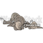 Group of Snails Clipart © Dennis Cox #5105