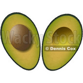 Sliced In Half Avocado Fruit with Seed Clipart Illustration © djart #5600