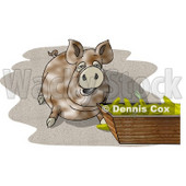 Pot-bellied Pig Beside a Feeding Container Full of Corn Cobs Clipart Picture © djart #6078