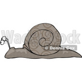 Gray Snail With Swirly Designs on its Shell Clipart Picture © djart #6144