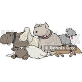 Different Breeds of Dogs in a Group Clipart Picture © Dennis Cox #6230