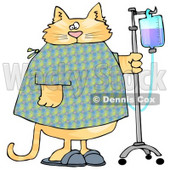 Orange Tabby Cat With an IV Dispenser in a Hospital Clipart Picture © Dennis Cox #6322