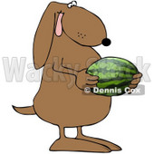 Royalty-Free (RF) Clipart Illustration of a Brown Dog Holding A Watermelon © Dennis Cox #70272