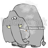 Royalty-Free (RF) Clipart Illustration of a Grey Elephant Smoking A Cigarette And Looking Back © Dennis Cox #86868