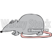 Royalty-Free (RF) Clipart Illustration of a Gray Rat With A Pink Tail In Profile © djart #92103