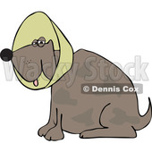 Cartoon of a Brown Dog Wearing an Elizabethan Colar Cone - Royalty Free Vector Clipart © djart #1196946