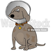 Clipart of a Sitting Brown Dog Wearing an Elizabethan Colar Cone - Royalty Free Illustration © djart #1219051