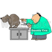 Clipart Illustration of a Nervous Brown Dog Cowering On An Exam Table As A White Male Vet Holds A Pair Of Scissors And Prepares To Neuter Him © djart #18946